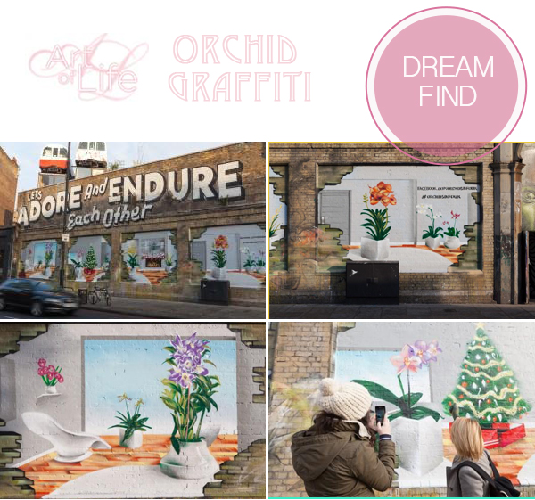 dream find, exhibition, art, graffiti art, art exhibition, orchids, Art of Life (2)